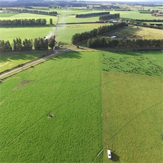 Options open up to lower farm footprint