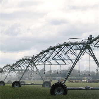 New study sheds light on reducing nutrient losses on irrigated farms