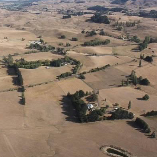 Feed run to the Hawkes Bay drought affected farmers